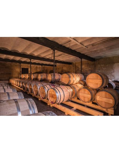 Visitez une cave à vin à Bordeaux