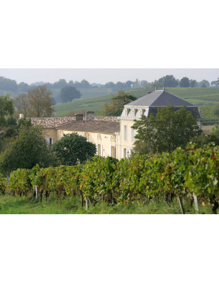 Le Château entouré de vignes à perte de vue