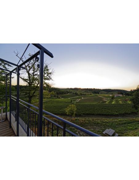La terrasse avec vue sur le vignoble de Saint-Emilion