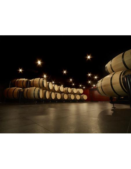 Un chai de vieillissement où sont élevés les grands vins