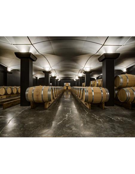 Visitez les caves à vin