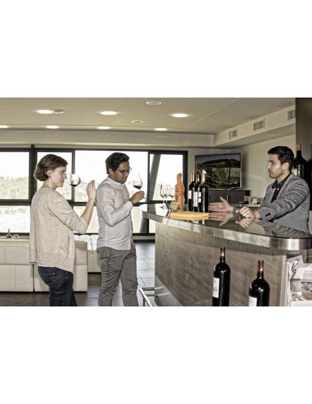 Après la visite guidée des chais, place à la dégustation des vins Bordelais
