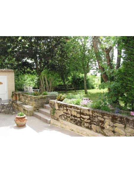 Jardin au château familial à Saint-Emilion