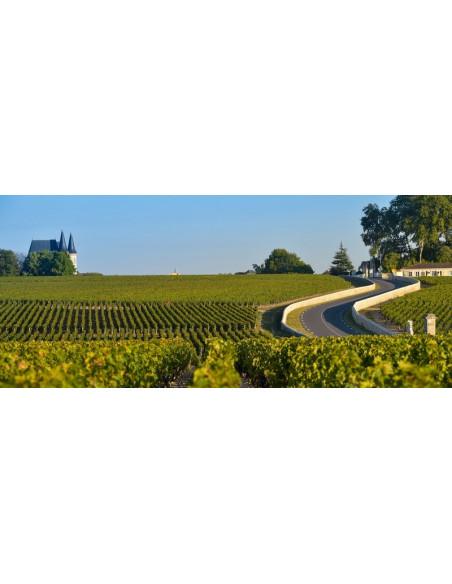 Parcourez la route des vins et découvrez deux Châteaux du Bordelais