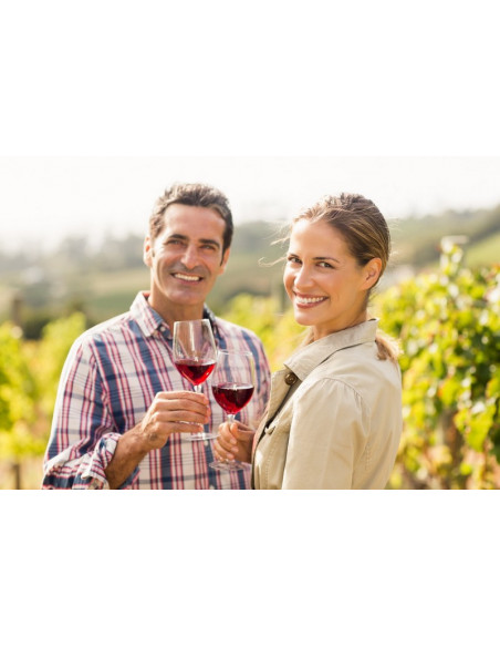 Partez en escapade romantique dans le vignoble Bordelais