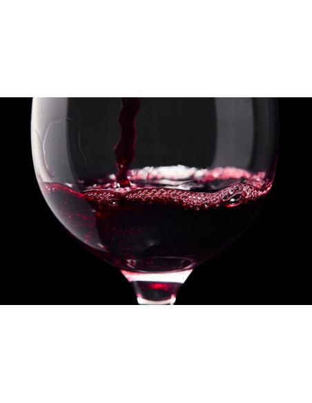 Dégustez des vins exceptionnels !