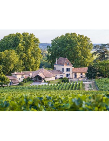 Le Château Grand Cru Classé de Saint-Emilion et son vignoble