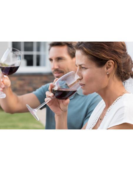 Dégustez et appréciez le vin ensemble lors de ce séjour oenologie