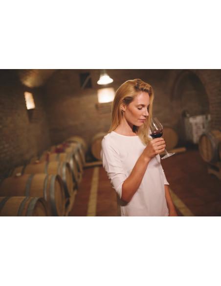 Dégustez des vins prestigieux dans ce Grand Cru Classé