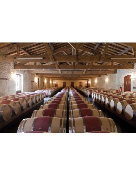 Découvrez le grand vin de Bordeaux en barriques pendant son vieillissement