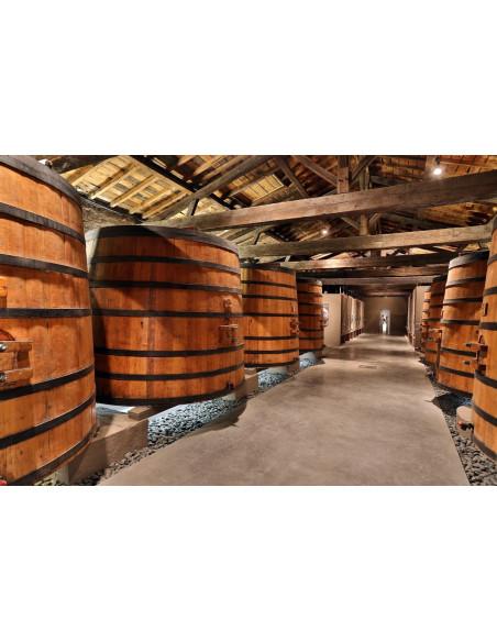 Cuvier de vinification d'un grand vin de Bordeaux
