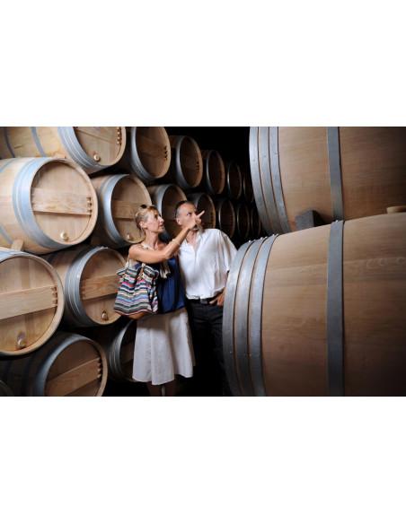 Visitez les caves du domaine pour mieux comprendre le vin