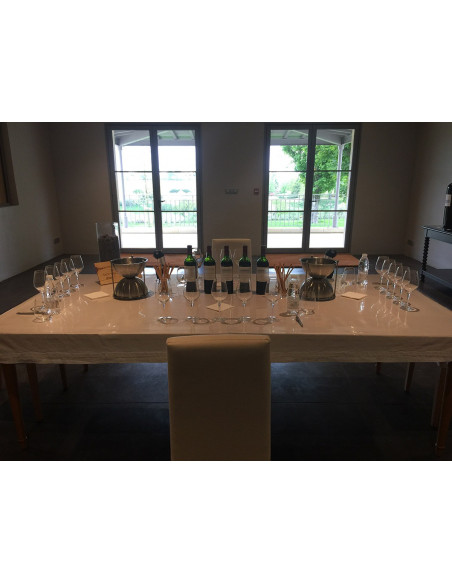 Apprendre le vin lors de votre seminaire entreprise bordeaux