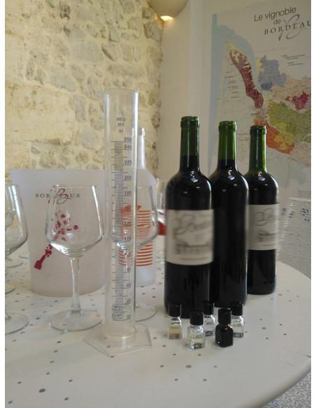 Merlot cabernet cépage vin de bordeaux