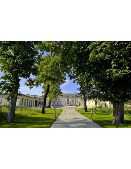 Un Château, Saint-Emilion Grand Cru Classé vous attend pour la découverte de son vignoble et de son vin