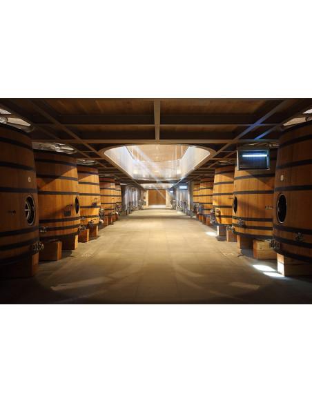 Découvrez les foudres en bois qui servent à la vinification d'un Grand Cru Classé