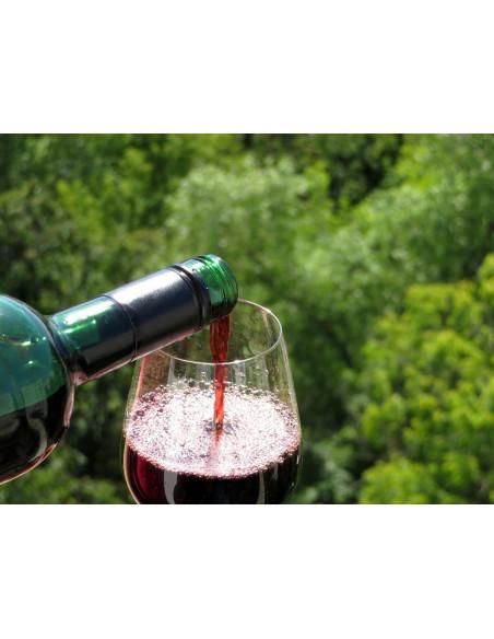 Lors de la dégustation, appréciez la couleur profonde & sombre des vins de Margaux