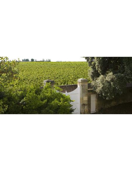 Le vignoble de Saint-Estèphe vu de votre chambre...