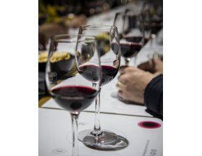 Comparez la couleur des verres de vin, on va vous apprendre à déceler les différences