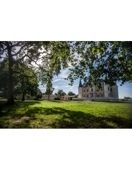Visitez des caves de château sur la route des vins dont ce magnifique château...