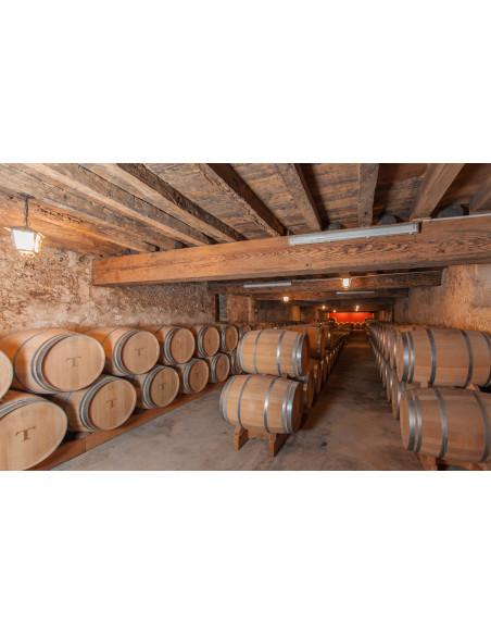 Visitez les caves à vin au préalable avec le travail du vin dans les chais