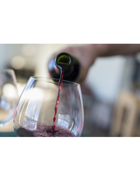 Sur place, au Château, dégustez et comparez 4 vins Bio !