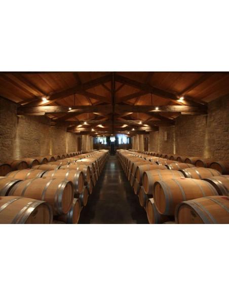 Visite de caves à vin toutes aussi belles les unes que les autres sont au programme...