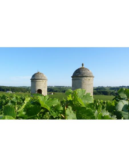 Le vignoble de Saint-Emilion