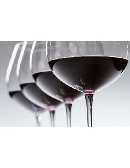 4 vins dégustés avec des parfums différents