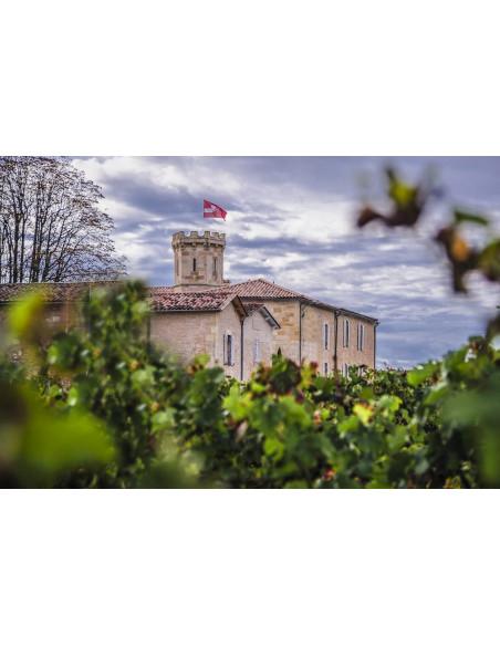Le Château, Saint-Emilion Grand Cru Bio où se déroulent ces dégustations