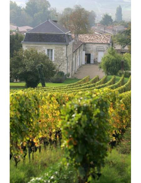 Votre hébergement au coeur des vignes propice au romantisme