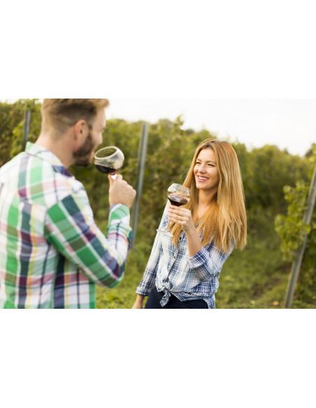 Mais aussi, dégustez les vins de Saint-Emilion avec comme paysage de fond, son vignoble...