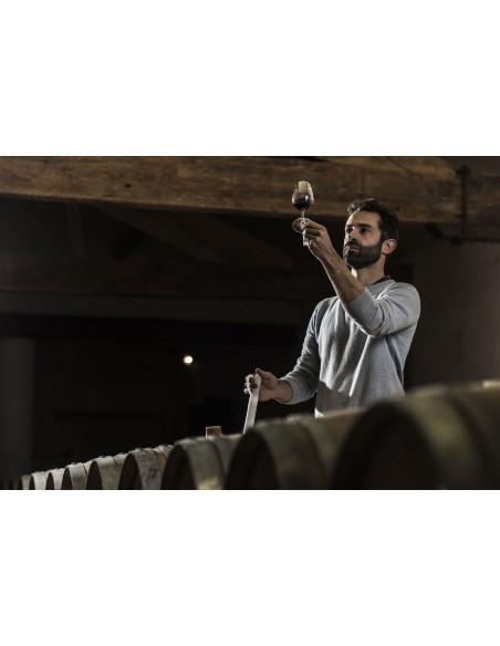 Durant votre séjour en amoureux, le viticulteur vous apprendra à regarder la couleur d'un vin- et à identifier l'âge du vin...