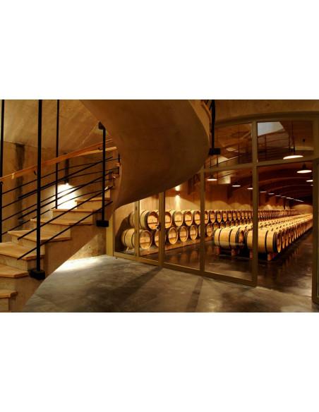 Visitez les caves remplies de barriques bordelaises de 225 litres chacune !