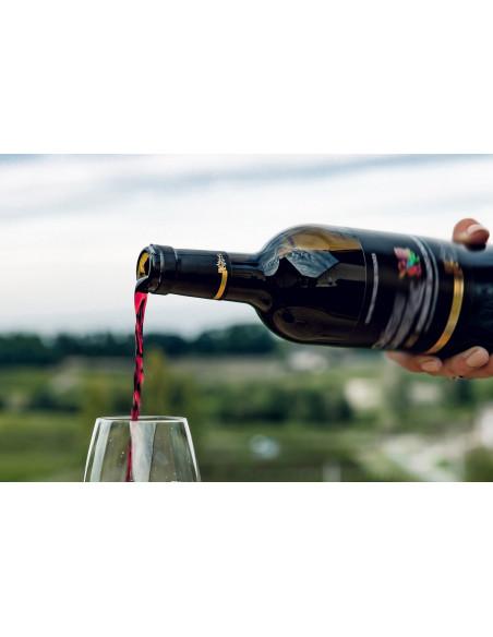 Apprenez à déguster un vin de Bordeaux lors de vos visites de cave, vos dégustations seront commentées