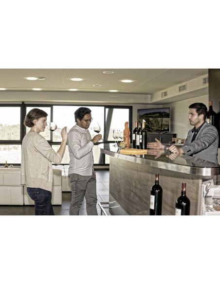 Dégustez différents types de vin de Saint-Emilion