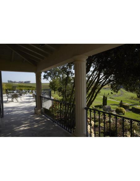 La terrasse du Château où vous résidez surplombant le vignoble