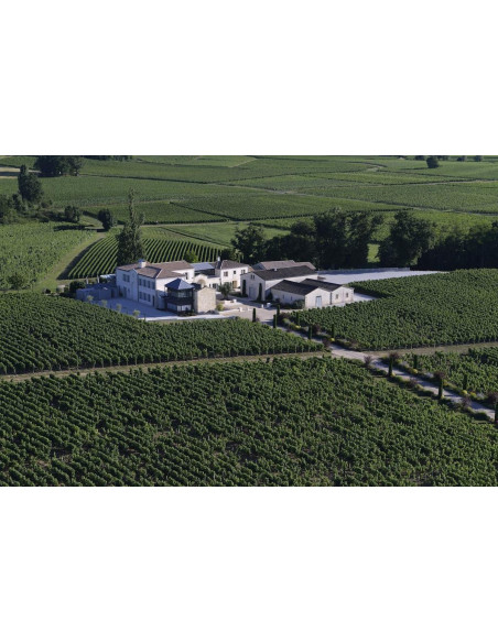 Le Château et le vignoble où vous serez hébergés...