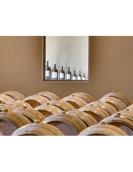 Une cave à vin typique avec des barriques Bordelaises