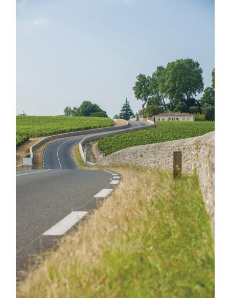 Circuit route des vins Saint-Emilion et Pomerol, découvrez ses plus beaux Châteaux