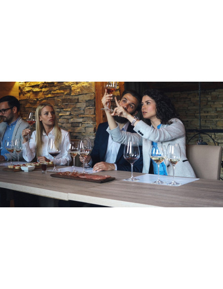 Atelier oenologie avec analyse de la couleur du vin