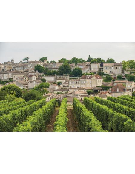 Le village médiéval de Saint-Emilion et son vignoble