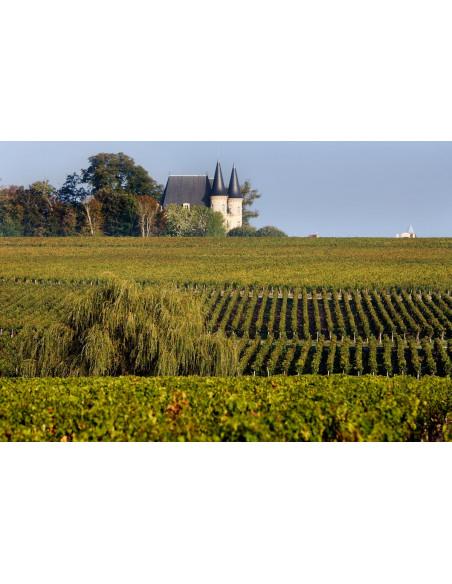 Parcourez la route des vins de Saint-Julien, Pauillac et Saint-Estèphe
