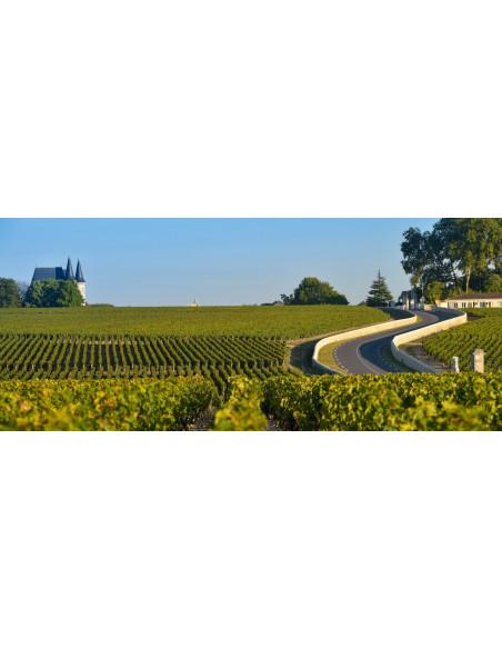 La route des vins du Médoc et ses prestigieux Grands Crus
