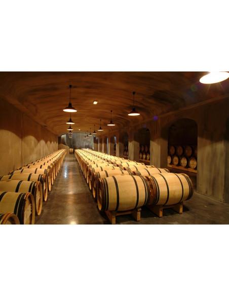 Découvrez les chais de vieillissement d'un grand vin