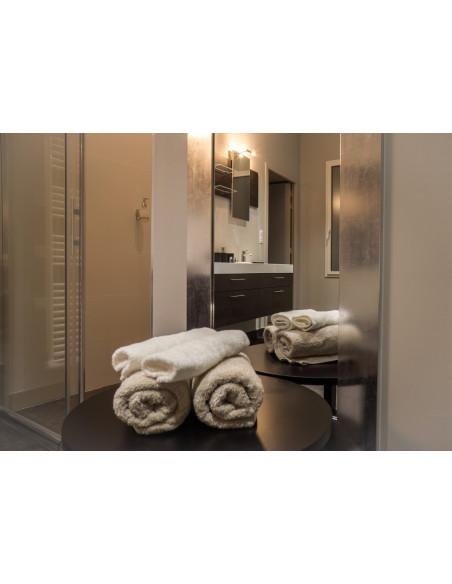 Après jacuzzi et sauna, vous pouvez prendre une douche dans l'espace Bien-Etre