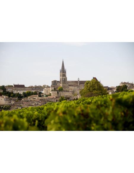 Le village de Saint-Emilion vu depuis les vignes