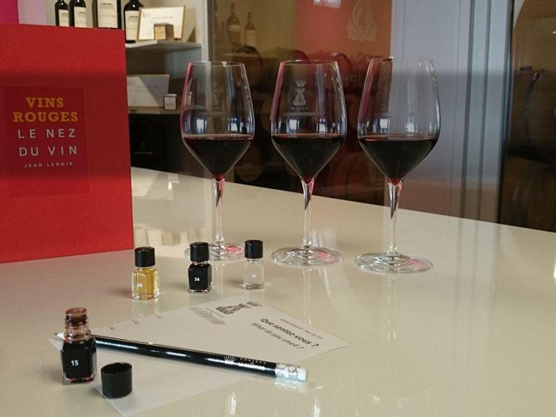 Offrez-vous un ATELIER OENOLOGIE dans la région des vins de bordeaux.