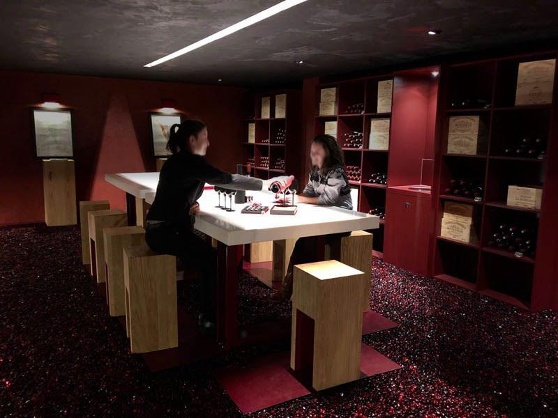 Offrez-vous un DEGUSTATION OENOLOGIQUE dans la région des vins de bordeaux.