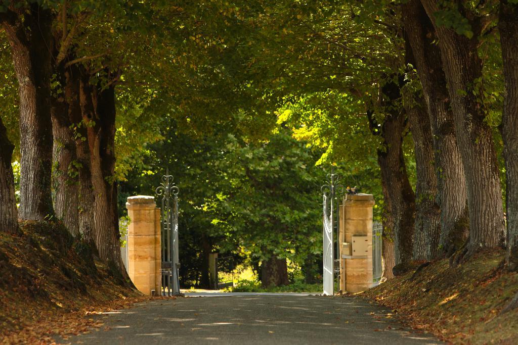 Allée qui mène au château vin de Bordeaux
